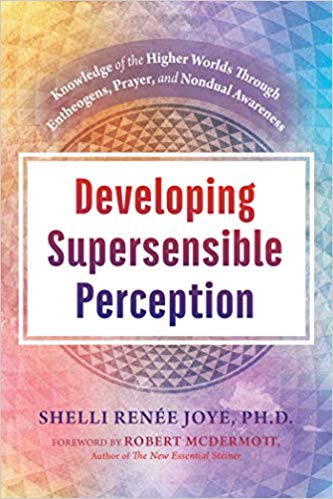 Developing Supersensible Perception