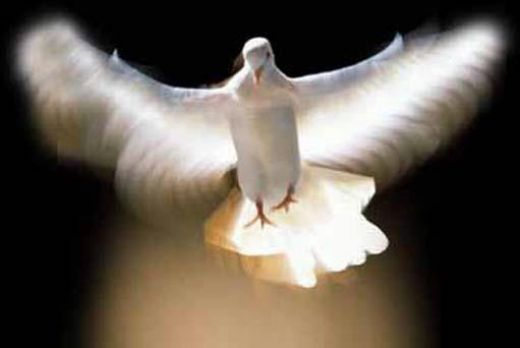 the Holy Ghost as Dove