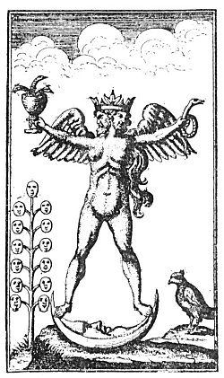 The androgyne in alchemy